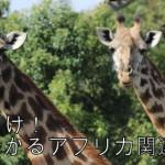 【日刊アフリカニュース】11/3まとめ〜路面電車・景気減速・U17W杯〜