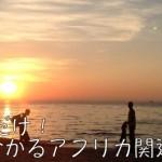 【日刊アフリカニュース】1/7ツイートまとめ〜ゾウの密猟・丸亀製麺・ボコ・ハラム〜