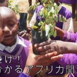 【日刊アフリカニュース】2/8ツイートまとめ〜BOPビジネス・バレンタイン・干ばつ〜