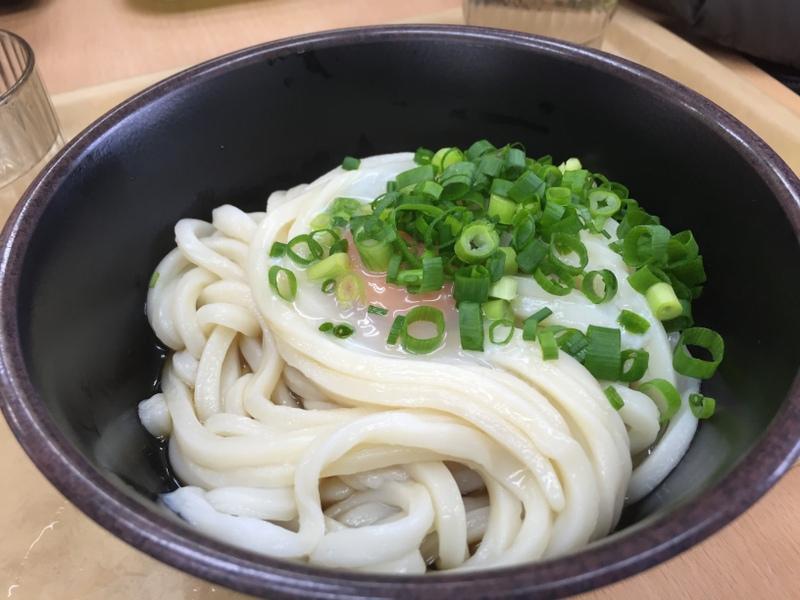 香川県人は本当に讃岐うどんを毎日食べるのか、正月の帰省を利用して検証してみた。